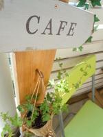 garden 022.JPG