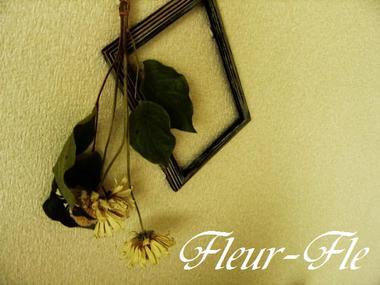 fleur-fle 004.JPG